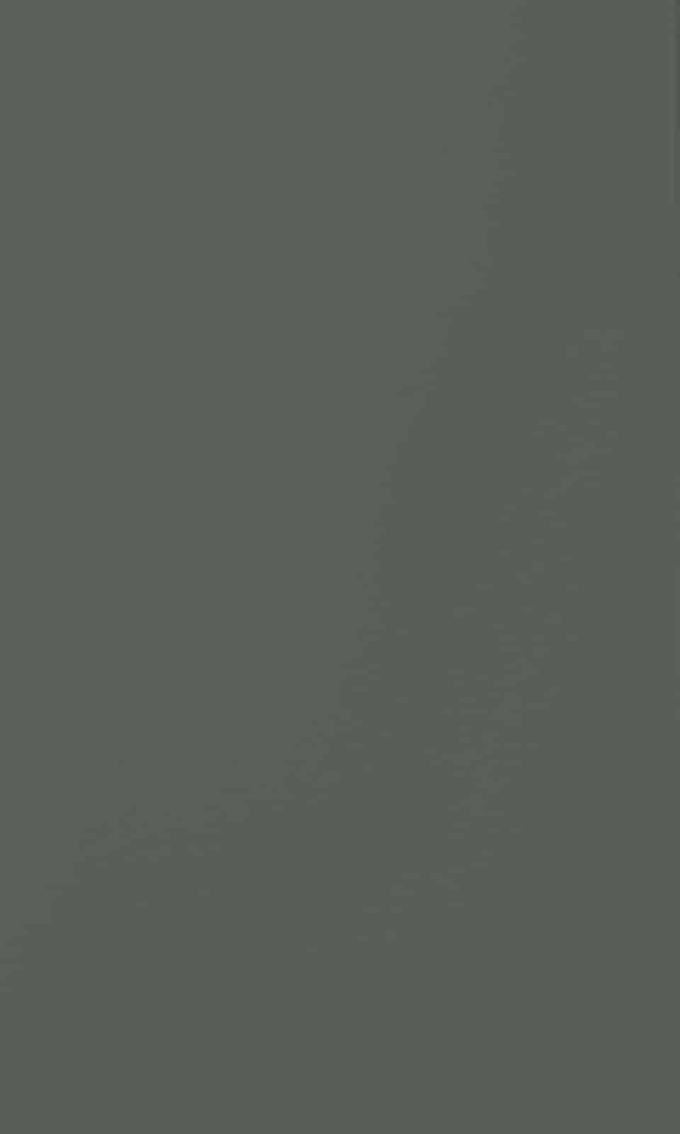 Crayon flat Olive