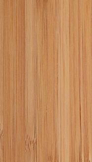 H2452 bamboe