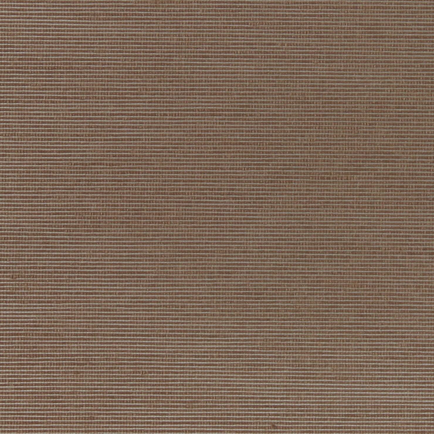 RT-1203/bruin